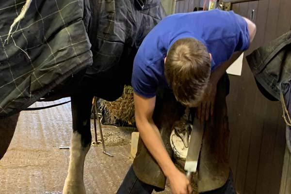 Ex-student Farrier Visits Equine