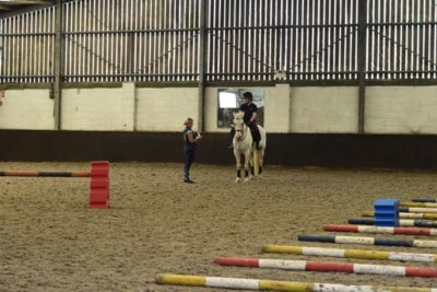 webDSC 5887 400x267 - Another Successful Craven College Equine Clinic with Kath Pinington