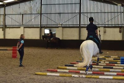 webDSC 5960 400x267 - Another Successful Craven College Equine Clinic with Kath Pinington