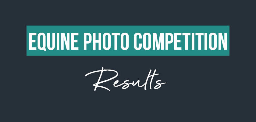 Equine Photo Competition – Results -