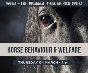 Horse Behaviour & Welfare92050