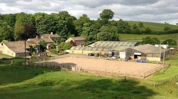 Virtual Talk with Owner of Wilkinson Farm Livery Yard -